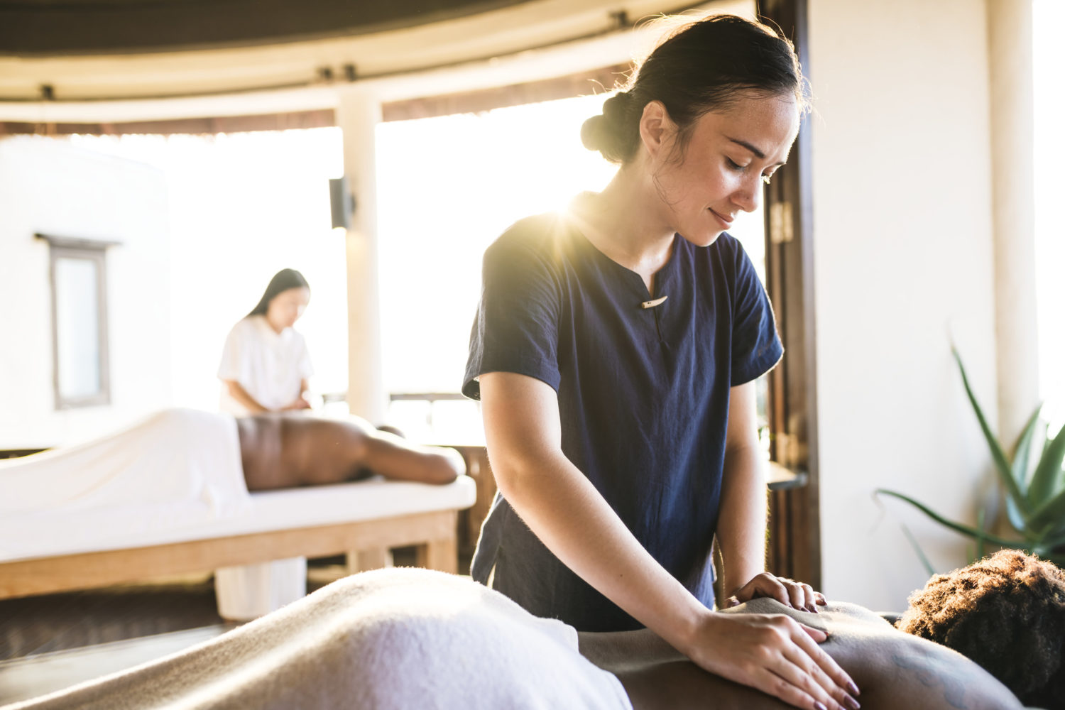 Massage Therapy Types